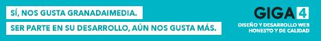 GIGA4. Somos desarrolladores y sabemos lo que hacemos.