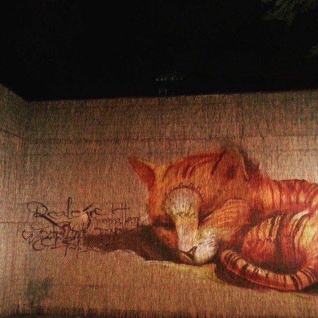Niño de las Pinturas, gato, Realejo