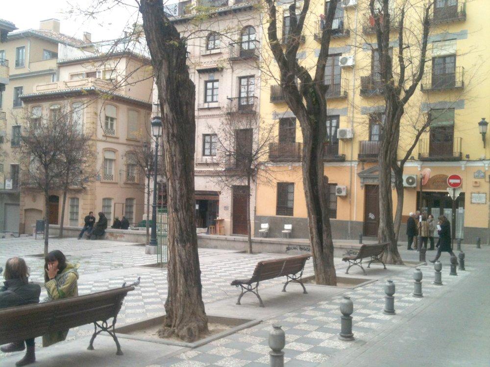 Árboles huecos en la Plaza Carlos Cano