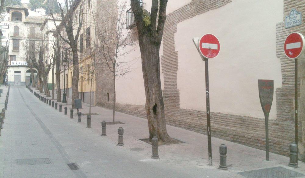 Árboles huecos en la Plaza de los Girones