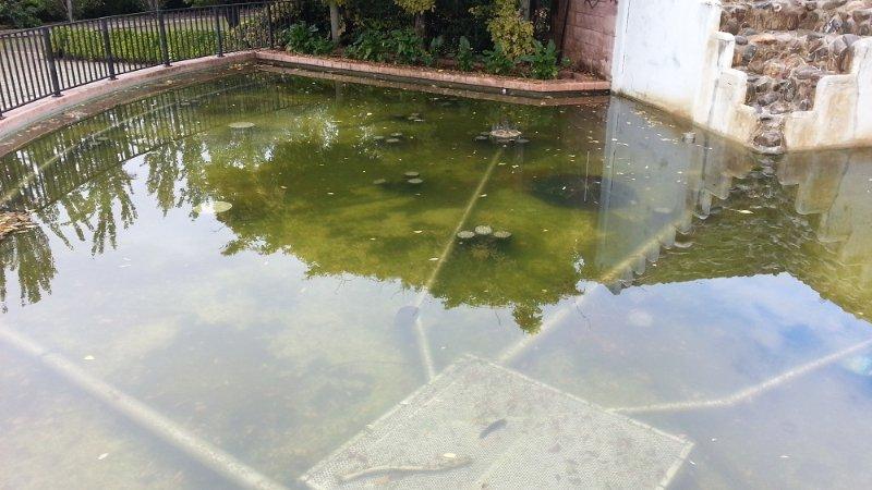 Fuente Parque Almunia