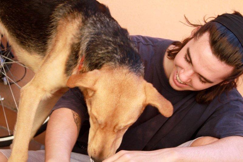 Jugando con Álvaro. Foto: Solidarios con los Animales