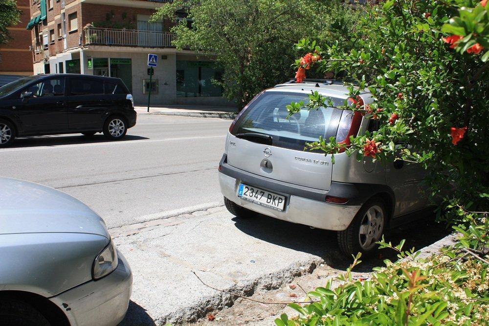 Bache en un aparcamiento de la Carretera de Málaga