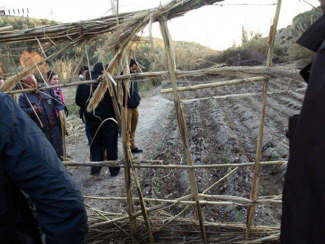 Huerta de Casería de Montijo - Proyecto UGR - Asociación de Parados