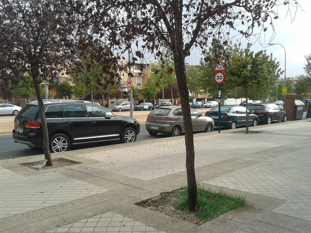 Árboles enfermos en la calle Carmen de Burgos