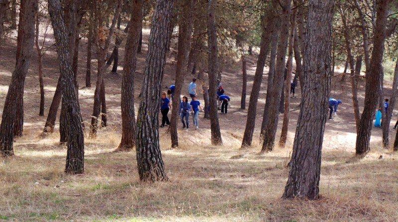 Limpieza, Cerro San Miguel, Albaicín
