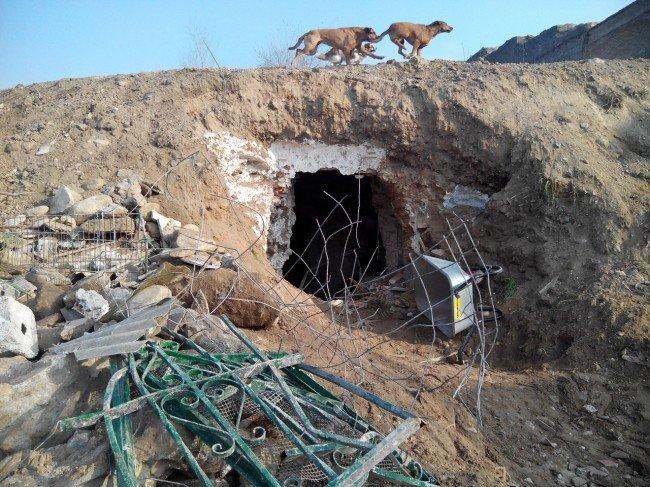 cueva reabierta cerro san miguel
