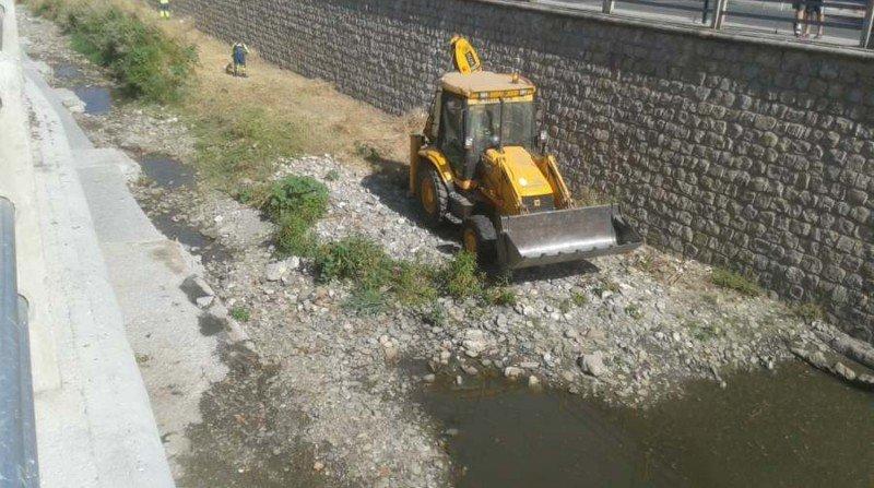 Desbroce Río Monachil