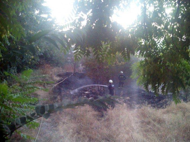 bomberos muralla ziri puerta monaita