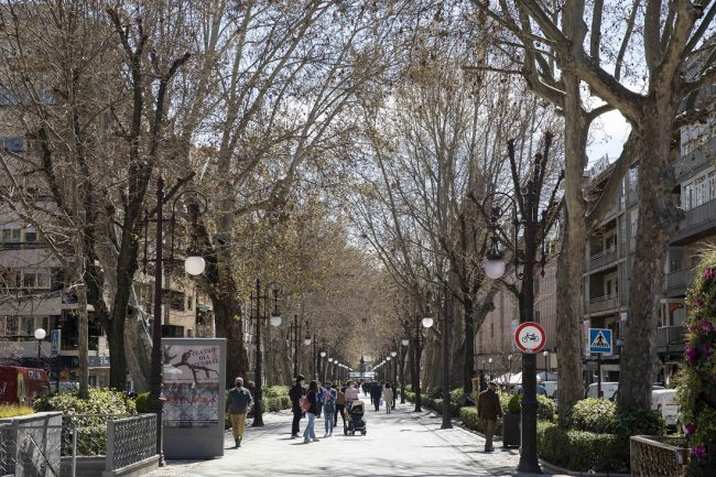 Carrera de la Virgen, Granada