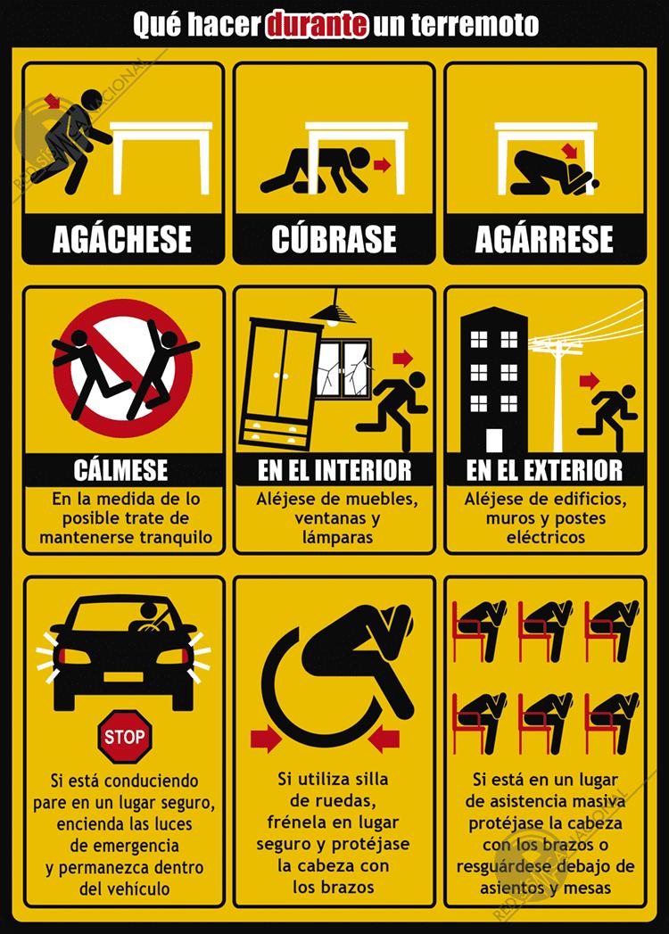 Durante un terremoto